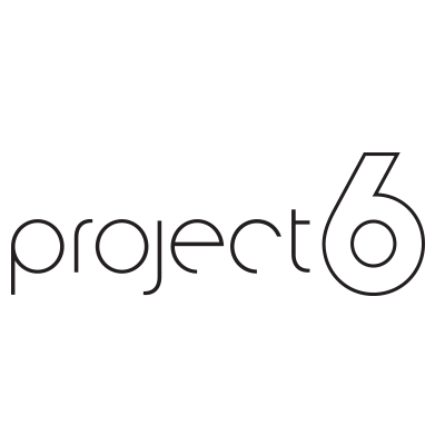 Project 6 image